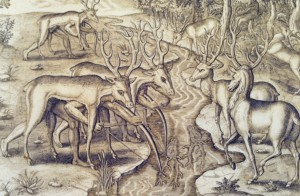 This 1500's depiction by Jacques Le Moyne and Theodor de Bry shows Timucuan Indains hunting deer in disguise; notice the legs of the hunters under the deer on the left side.